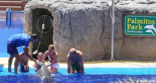 Palmitos Park delfiner